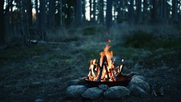 Nigth Campfire