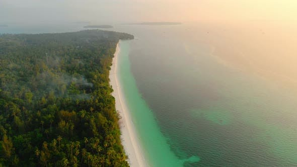 Thumbnail for Aerial drone: uncontaminated coastline tropical beach caribbean sea coral reef palm tree woodland