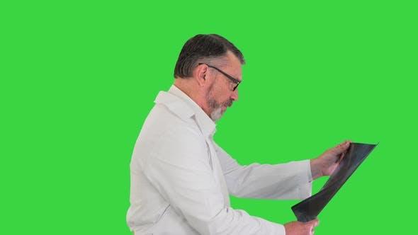 Doktor Gehen und Blick auf Lungen Xray auf einem Greenscreen Chroma Key