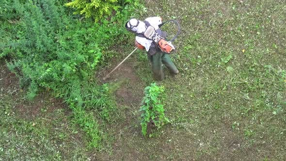 Thumbnail for Gardener Cuts the Grass with Lawn String Trimmer