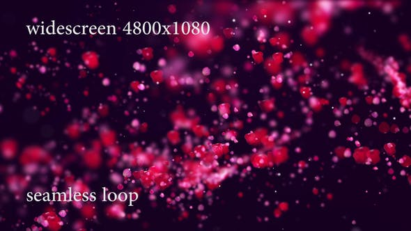 Rose Petals Whirlwind Widescreen