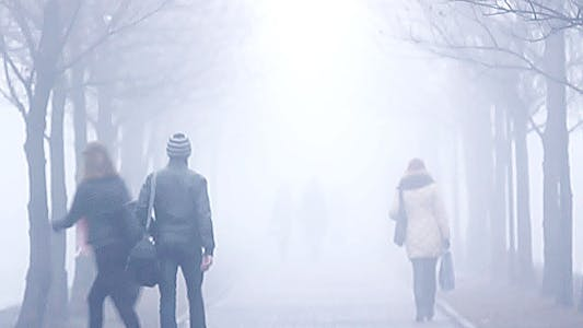 Thumbnail for City Mist 3