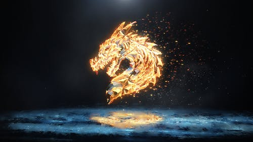 Ice and Flame Logo