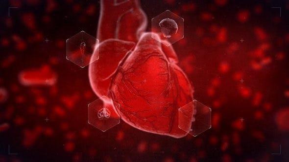 Thumbnail for Heart Reveal