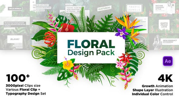 Thumbnail for Floral Design Pack