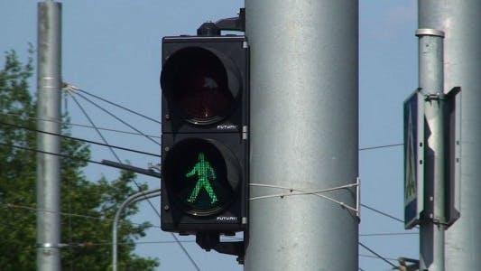 Thumbnail for Pedestrian Traffic Lights