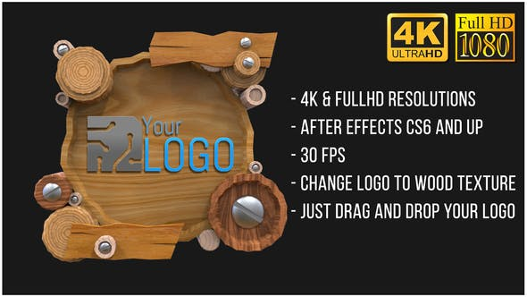 Thumbnail for Wooden Logo (AfterFX)
