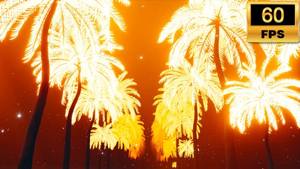 Thumbnail for Light Palms Tunnel Alley