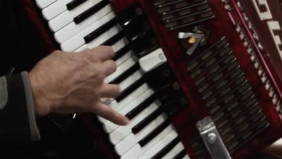 Man playing the Vintage Accordion.