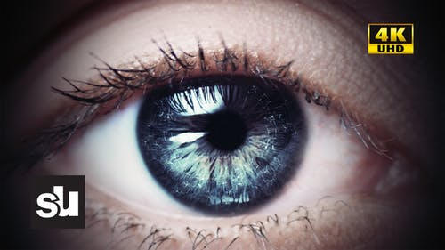 Blink Of The Eye