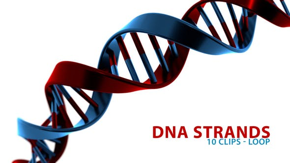 Thumbnail for Colorful DNA Strands
