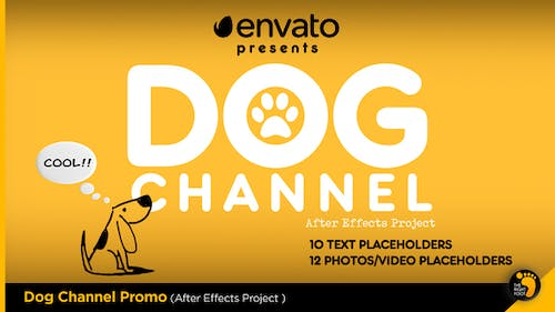 Dog Channel Broadcast Pack