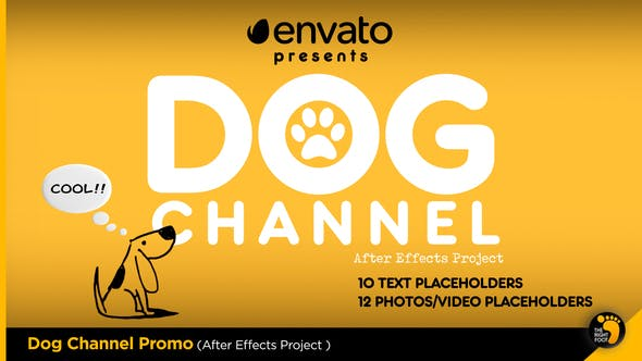 Thumbnail for Dog Channel Broadcast Pack