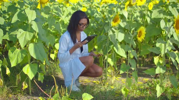 Agronomist with Tablet Pc Researching Pest Control