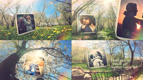 Thumbnail for Spring Wedding Slide