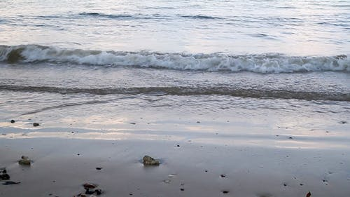 Beach And Wave II