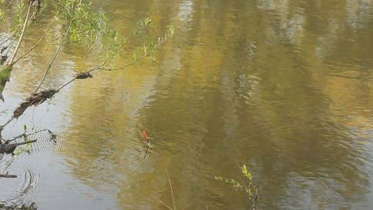Thumbnail for Fishing Float