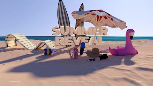 Summer Logo Reveal