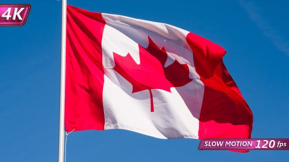 Thumbnail for State Flag Of Canada