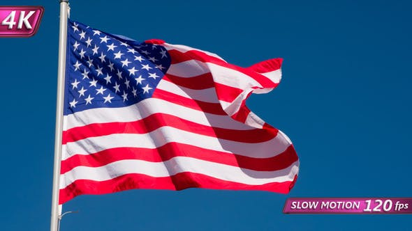 Thumbnail for State Flag Of The USA