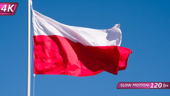 Thumbnail for Flag Of Poland Fluttering In The Wind