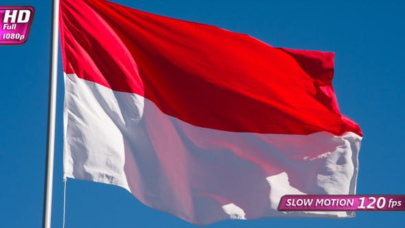 State Flag Of Indonesia
