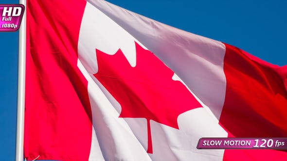 Thumbnail for Flag Of Canada Fluttering In The Wind