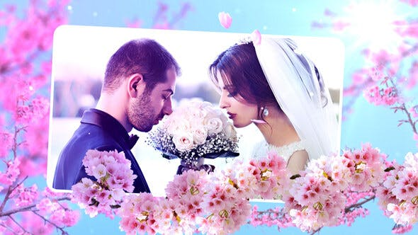 Thumbnail for Wedding Flowers Slideshow