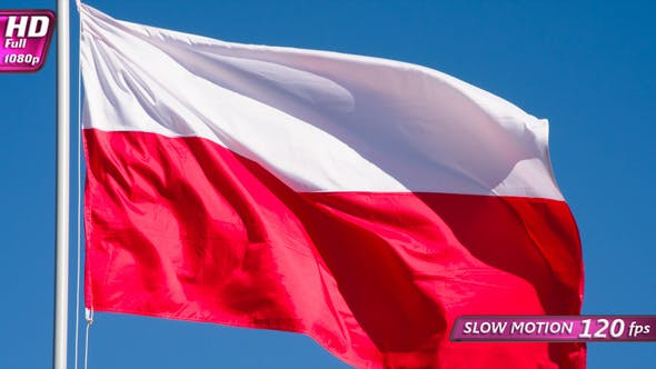 Cover Image for State Flag Of Poland