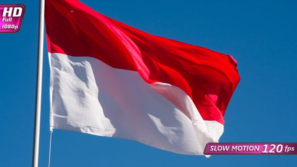 Thumbnail for Flag Of Indonesia Fluttering In The Wind