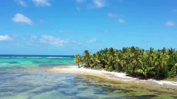 Thumbnail for Tropical Coastline with Coconut Palm Trees on Island Near Caribbean Sea, Dominican Republic
