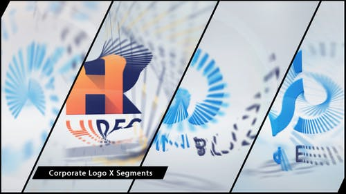 Corporate Logo X Segments