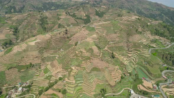 Cover Image for Farmland in a Mountain Province Philippines, Luzon