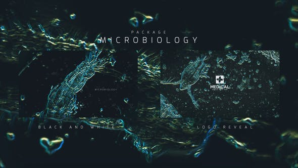Thumbnail for Microbiology Package