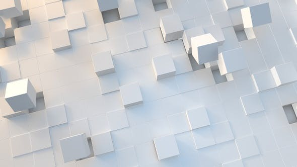 White Cubes Motion 24