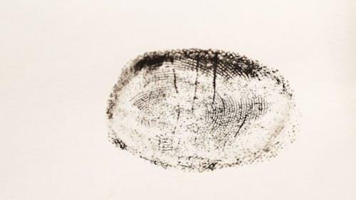 Investigating Fingerprints