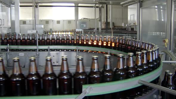 Thumbnail for General Shot of Packing Workshop of Beer Factory, Bottles Are Moving on Conveyor