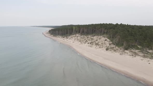 Thumbnail for Baltic Sea Coast Line with Sandy Beach and Forest