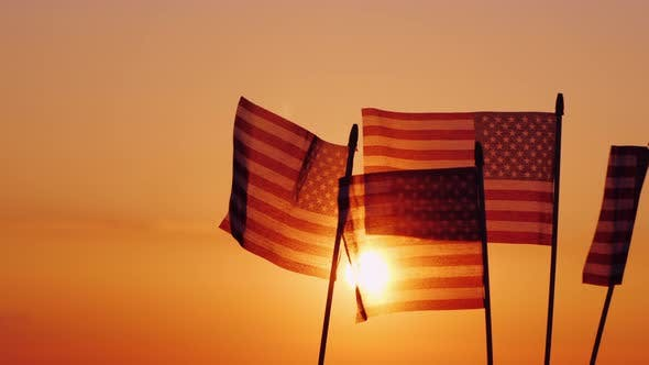Thumbnail for American Flags in the Rays of the Setting Sun