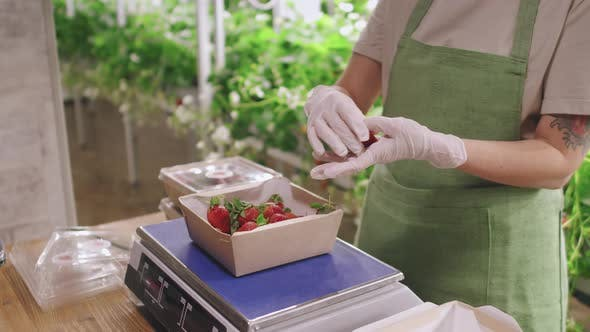 Packing Strawberries For Retail