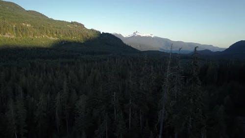 Black Tusk Mountain Dolly Shot In British Columbia Wilderness