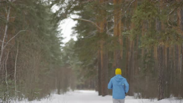 Thumbnail for Rear View of Man Jogging in Forest on Quiet Winter Morning