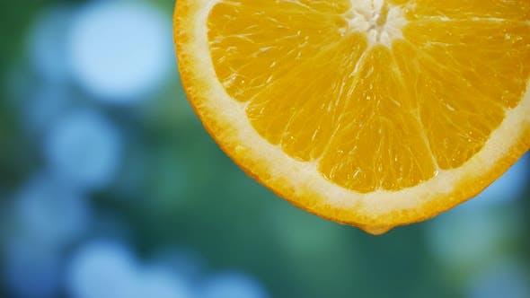 Thumbnail for Juice Drops Flows Down on Orange Fruit in Garden