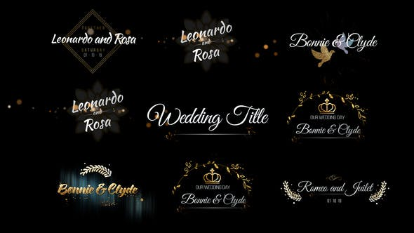 Thumbnail for Six Beautiful Wedding Title