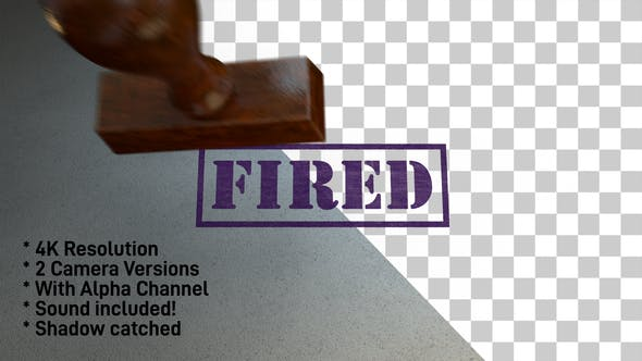 Cover Image for Fired Stamp 4K - 2 Pack