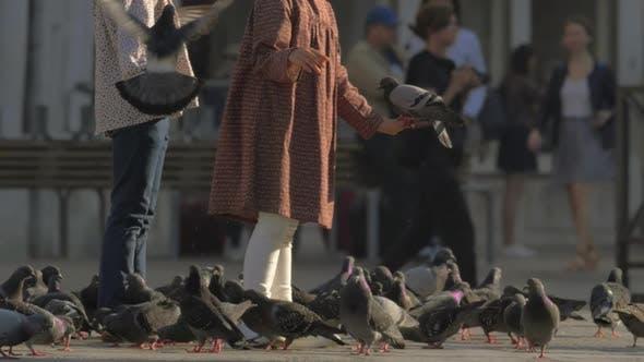 Thumbnail for Children Feeding Pigeons