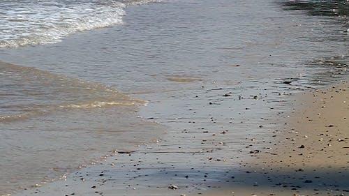 Slow Motion - Waves Of Shoreline