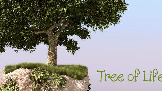 Thumbnail for Tree of Life