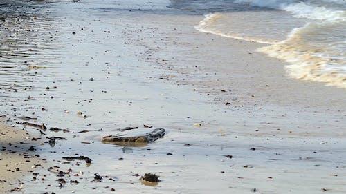Wave At Seashore II