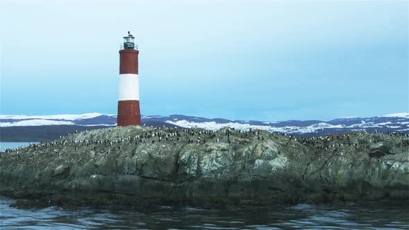 Thumbnail for Lighthouse In the Beagle Channel, near Ushuaia, Tierra del Fuego province, Argentina.